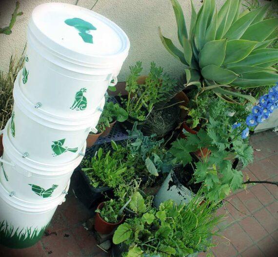 Genera tu compost en tu casa sin esfuerzo